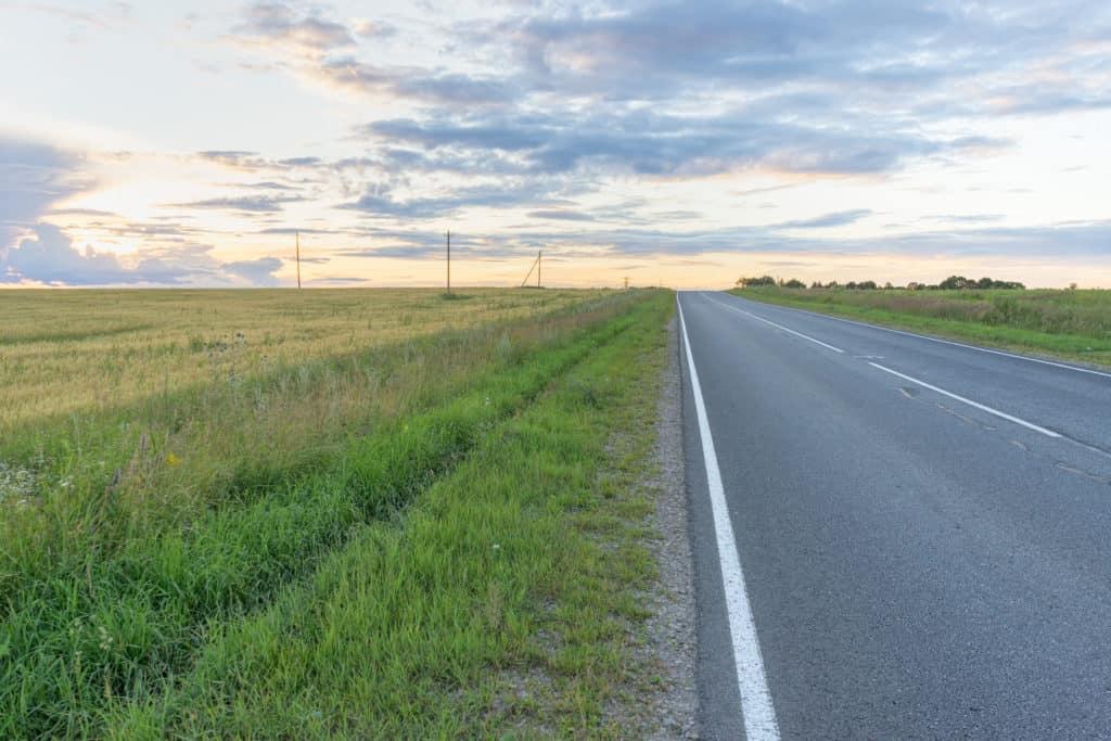 Ronja Collins Fatally Struck in Interstate 5 Accident [Tukwila, WA]