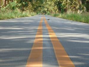 Woman Killed in Rollover Crash on 60 Freeway near Jack Rabbit Trail [Beaumont, CA]